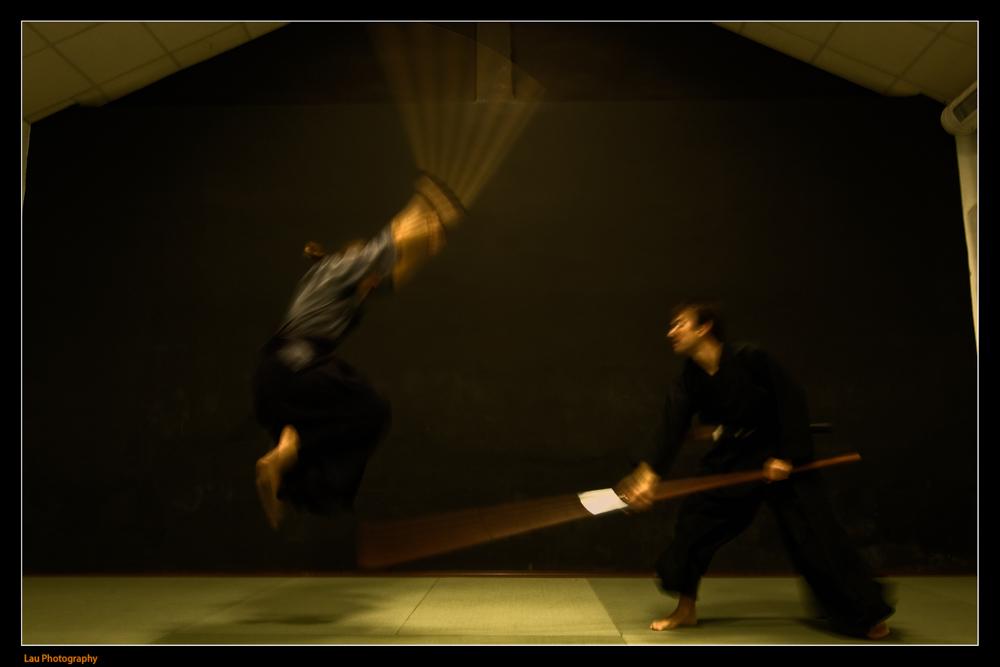Naginatajutsu, 長刀術 or 薙刀術?, es un arte marcial japonés para el manejo de la naginata (arma usada por los samuráis).