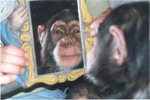 10kika espejo