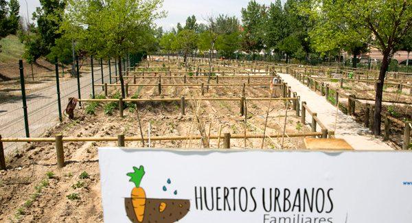 Alcobendas sorteará 123 huertos urbanos que se podrán solicitar a partir del 27 de noviembre