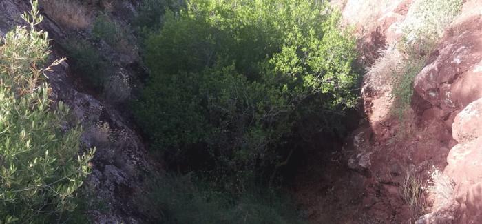 Cortadura de la mina, en Sierra Cabrera. (Fotografía de Luis Cuadrado).