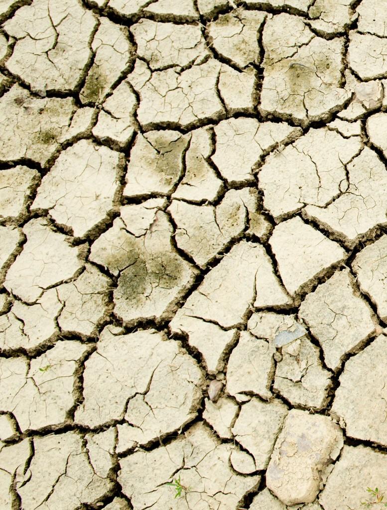 La sequía es una de las consecuencias más importentes del cambio climático.