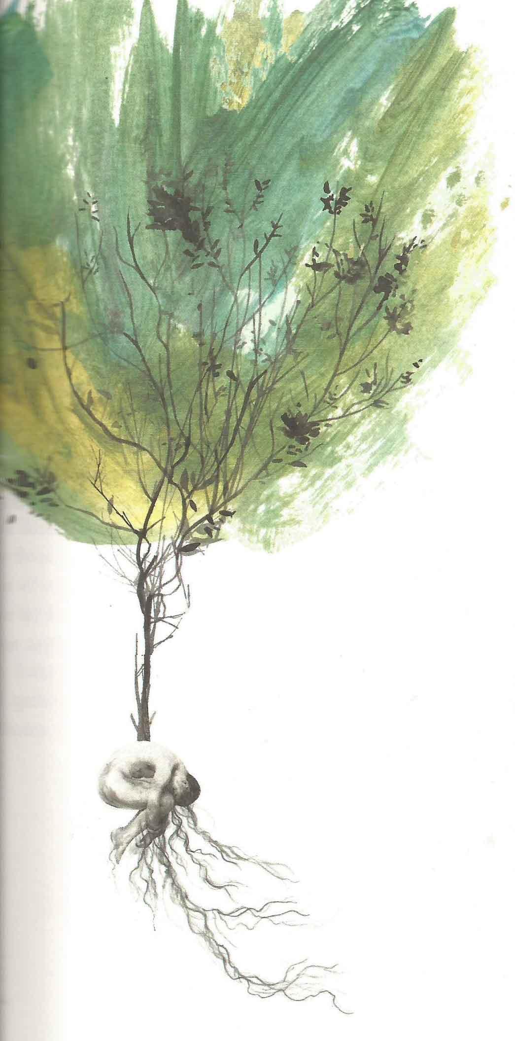 Pessoa-Ilustracion