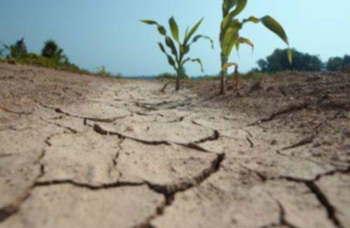 Camino a la peor sequía que haya conocido España: tomar las medidas necesarias