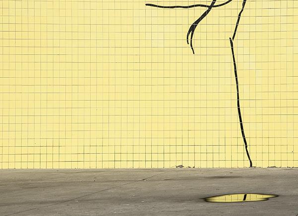 ©Paloma Pérez de Andrés , Segundo Premio de Fotografía en Color Junio.