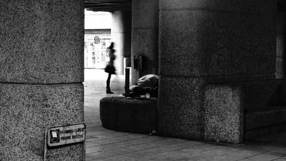 @Sergio Márquez, de su serie Escamas de Azca, fotografía expuesta en Centro Sanz Enea de Zarautz.