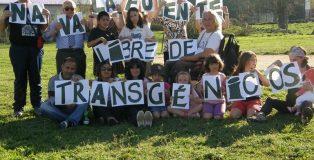 Navalafuente municipio libre de transgénicos.
