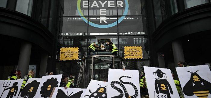 El cóctel de genes que nos envenena: los transgénicos y Bayer-Monsanto