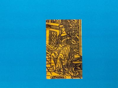 La intensidad poética en el libro 'Quién', de Roberto Rochas