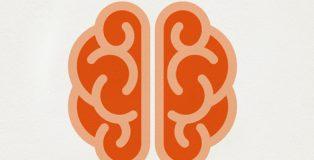 'Dieta para el cerebro. Cuida y alimenta tu memoria', del doctor Antonio Escribano.