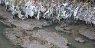 El río Jarama convertido en un colector de residuos y aguas fecales.