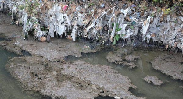 El río Jarama se ha convertido en un colector de todo tipo de residuos y aguas fecales